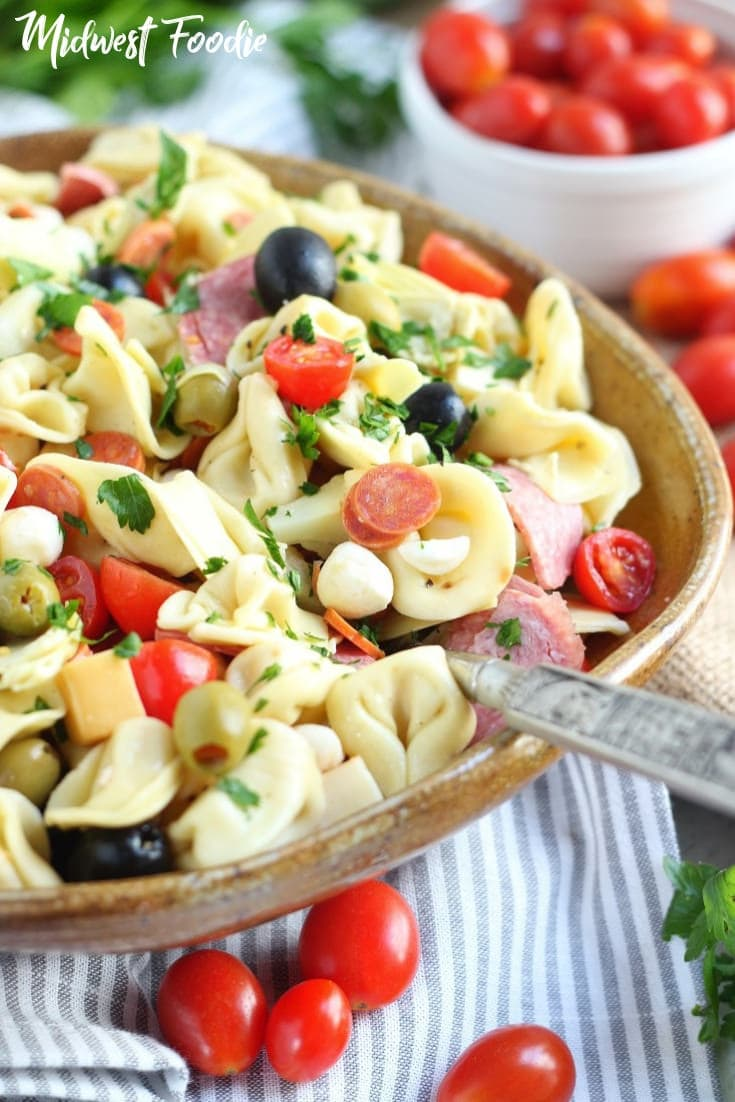 Simple Antipasto Pasta Salad | Midwest Foodie | Cheese filled tortellini, fresh tomatoes, sliced salami and mini pepperonis, fresh mozzarella, smoked Gouda, olives and artichoke hearts tossed in a simple red wine vinaigrette. Garnish with fresh parsley for a pop of color and you've got the perfect appetizer you can eat with a fork! #midwestfoodie #pasta #salad #sidedish #mealprep #easy #simple #vegetarian