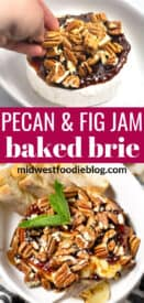 Pinterest pin of pecan and fig jam baked brie