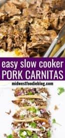 Pinterest pin of pork carnitas