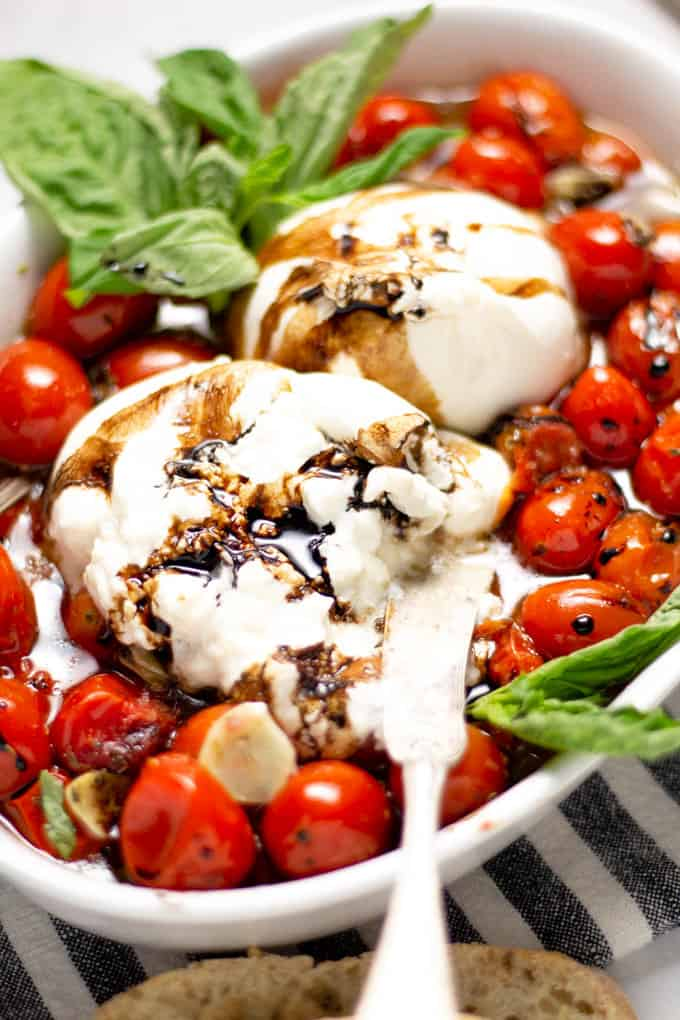 Close up shot of a white platter filled with roasted tomatoes and burrata garnished with fresh basil