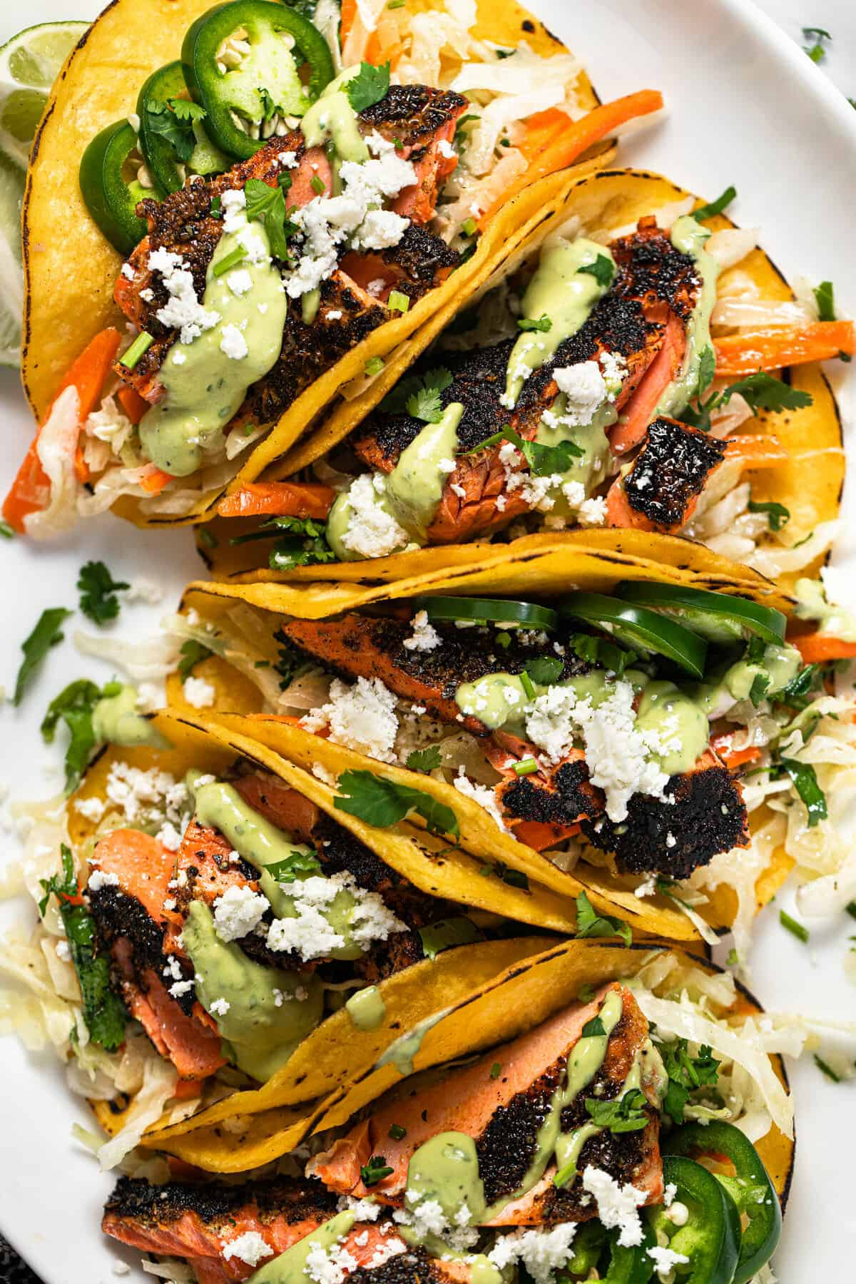 Close up shot of a tasty salmon taco recipe garnished with fresh cilantro